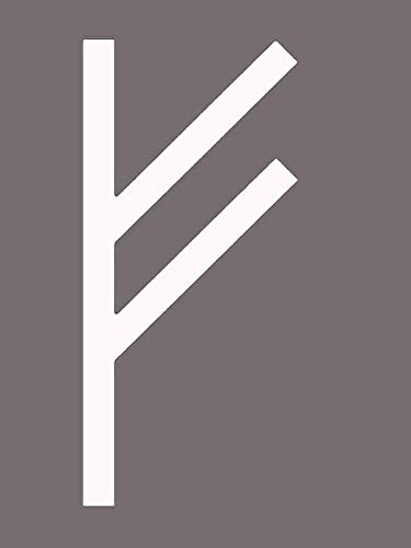 ION Graphics Viking Decal - Wealth and Prosperity Rune Viking Vinyl Sticker Transfer -Viking Bumper Sticker - Rune Sticker - Viking Gift - Made in The USA Size: 2.300