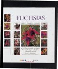 img - for Fuchsias (New Plant Library) book / textbook / text book
