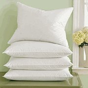 Pacific Coast Down Surround Standard Pillow Set  2 Standard Pillows