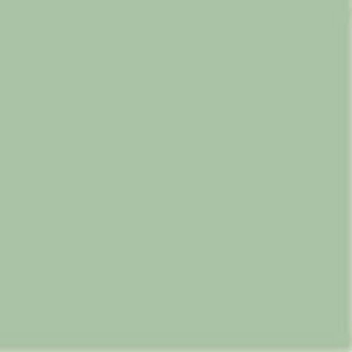 (Daler Rowney Artists Soft Pastel : Medium size (12mm x 65mm) Green Grey 2 by Daler Rowney)