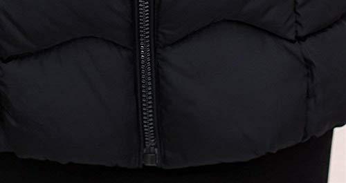 Manga Cuello Moda Chaqueta Acolchada Encapuchado Plumas Schwarz Acolchado Cremallera Larga Invierno Elegante Sintética Modernas Abrigo Piel De Otoño Espesar Informales Abrigos Mujer vYpZgw