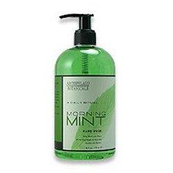 Archipelago Morning Mint Hand Wash, 17 Fl Oz