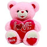 Valentines Day Gift Plush Teddy Bear 2018 (Pink Love)