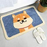 Anti Slip Bath Mat Rug, Shag Shower Mats with Extra Soft and Water Absorbent Rugs, Machine Wash/Dry, Luxury Bath Carpet Fit for Bathtub, Shower and Bath Room