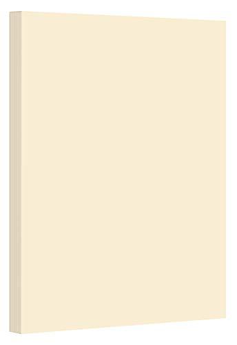 Pastel Color Card Stock Paper, 67lb Cover