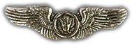US Air Force Mini Air Crew Wings Lapel Pin