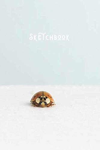 Sketchbook: Simple Minimalists Blank Paged Sketch Book   For Creative Artists Practicing Sketching Doodling Drawing Skills   Ladybug - Nature Series