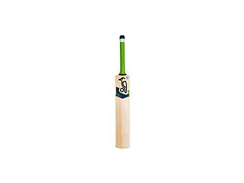 "Kookaburra Signature Bat Mini Cricket Bat Miniature Autograph Bat 15/"" inche"