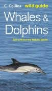 Whales and Dolphins (Collins Wild Guide)