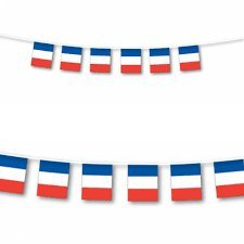 French Flag France String Flags Banner 33ft Decoration]()