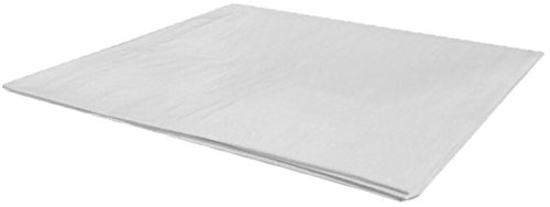 Toldo Blanco 4X5m 110gr SINI