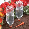 Automatic Irrigation Watering Spikes – Set Of 8