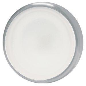 Lumitec Halo Brushed Flush Mount Down Light White Only 112803