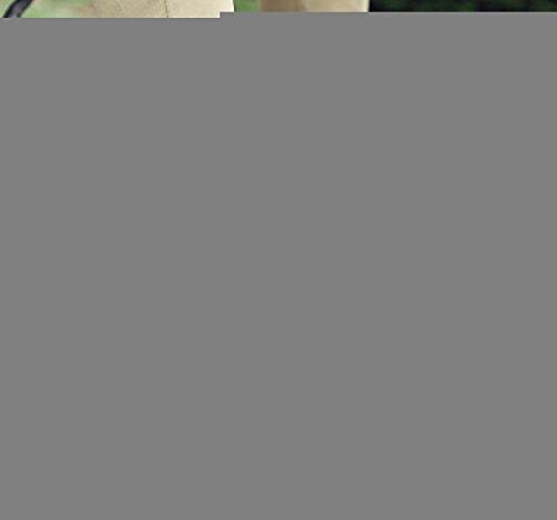 Casual LIEBE721 Uomo Passeggio on Nero Scarpe Moda Scarpe Slip da Popolare fHxqf6wn