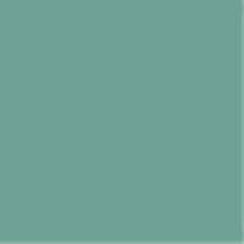 (Daler Rowney Artists Soft Pastel : Medium size (12mm x 65mm) Hookers Green 2 by Daler Rowney)