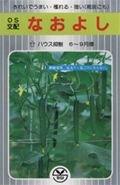 【キュウリ種子】 なおよし (埼玉原種育成会)350粒 B00ANEHJC0