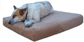 The original Max Comfort® memory foam dog bed. World's Best TM dog beds. Large 4″x30″x48″ Buckskin Microfiber, My Pet Supplies