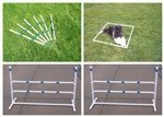 Agility Gear HD Outdoor Practice Set - II