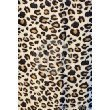 Fleece Throw 50in X 60in Leopard Design by Wal-Mart