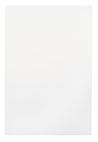 School Smart Folding Bristol Tagboard - 9 x 12 - Pack of 100 - White