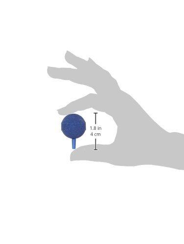 Amazon.com : eDealMax 10 piezas de pescado tanque DE 30 mm bola en Forma de acuario burbuja de aire Difusor Piedras Azul : Pet Supplies