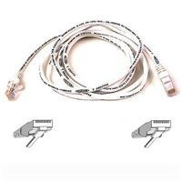 Belkin Components - Belkin High Performance - Patch Cable - RJ-45 (m) - RJ-45 (m