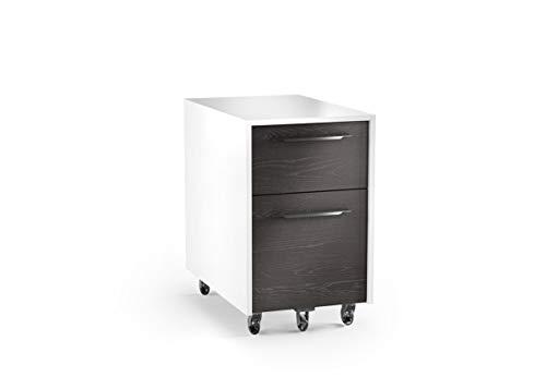 BDI Furniture 6307 SW/CRL Format File Cabinet ()