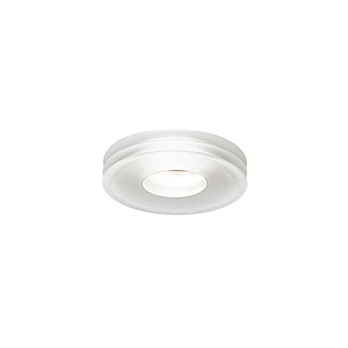 Leucos Recessed Low Voltage Light Disk Trim with Housing Frosted Glass MR16 Satin - Leucos Disk