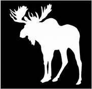 Chase Grace Studio Moose Hunting Vinyl Decal Sticker|WHITE|Cars Trucks Vans SUV Laptops Wall Art|5.5