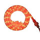 Totally Ghoul Orange Rope light Halloween Decoration ()