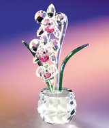 """CRYSTAL WORLD """"Angel Heart Orchid"""""""