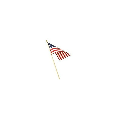 Valley Forge Flag 48 Piece Display 12in. X 18in. US Stick Flags USE12D - Pack of 48