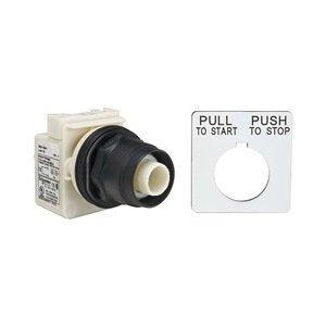 Telemecanique / Schneider Electric - 9001SKR8P1 - Illuminated Push Button Operator, No Cap
