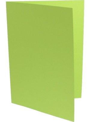 100 Doppelkarten DIN Lang ( DL ) lindengrün B003KVSQCK | Zu einem niedrigeren Preis