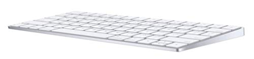 Apple Magic Keyboard (Wireless, Rechargable) (US English) - Silver (Keyboard Ipad Wireless Mouse And)