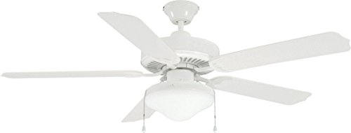 Litex E-WOD52WW5C All Weather Collection 52-Inch Indoor/Outdoor Ceiling Fan with Five White ABS Blades and Single Light Kit with Frost Glass
