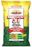 Pennington Seed 100516048 3 lb Fescue Seed
