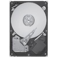 Seagate Barracuda 7200.12 320 GB 7200 RPM SATA 6Gb/s NCQ 16MB Cache 3.5 Inch Internal Bare Drive ST3320413AS by Seagate
