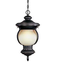 (Dark Sky 1 Light Outdoor Lantern in Bronze Finish - WI909789)