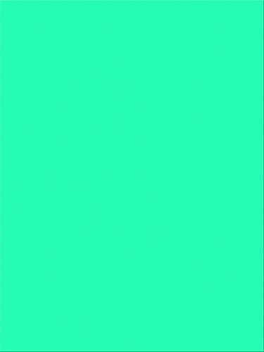 "Pacon SunWorks Construction Paper, 9"" x 12"", 100-Count, Turquoise (7704)"