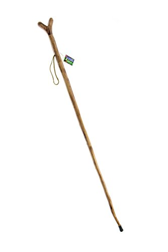 Steel Yoke - SE WS622-55YH Natural Wood Walking Stick with V Yoke for Rifle, Steel Spike and Metal-Reinforced Tip Cover, 55