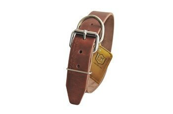 "Dean & Tyler ""B and B Brown Basic Leather Dog Collar with Strong Nickel Hardware, Size 36-Inch by 2-3/4-Inch, Fits Neck 34-Inch to 38-Inch"