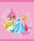 Disney Princess Quilt in Full / Queen Size