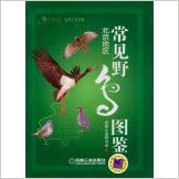 Book FON common bird book series Design: Beijing Area(Chinese Edition)