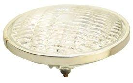 (GE FGS / DWA LAMP / BULB, (120 VOLT 250 WATT))