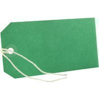 Pack Of 100 x Green Strung Tags Tickets Luggage Labels 120 x 60mm ()