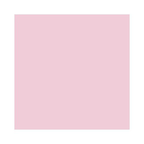 DecoArt Americana Acrylic Paint, 2-Ounce, Poodle Skirt Pink]()