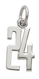 Rembrandt Charms Number 24 Charm