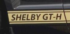 hertz-mustang-gt-h-gold-rocker-panel-door-stripes