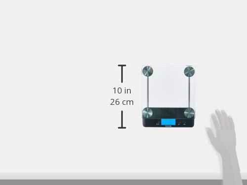 Taylor 30 Libra capacidad ultra alta precisión de báscula de cocina: Amazon.es: Hogar